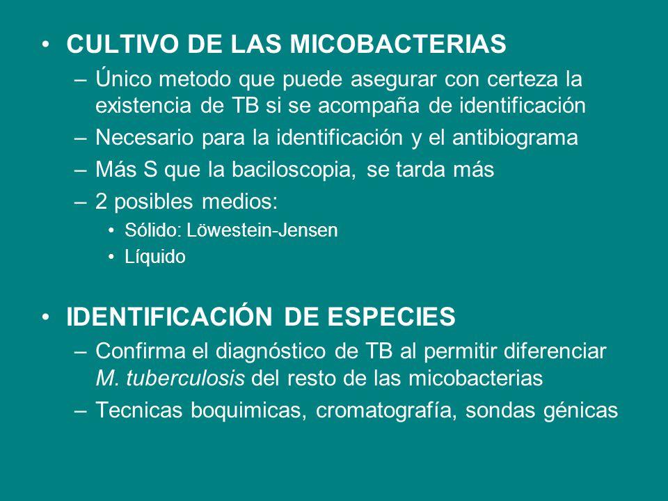 CULTIVO DE LAS MICOBACTERIAS –Único metodo que puede asegurar con certeza la existencia de TB si se acompaña de identificación –Necesario para la iden