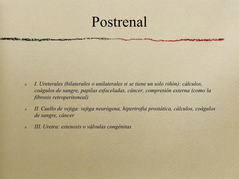Postrenal I. Ureterales (bilaterales o unilaterales si se tiene un solo riñón): cálculos, coágulos de sangre, papilas esfaceladas, cáncer, compresión