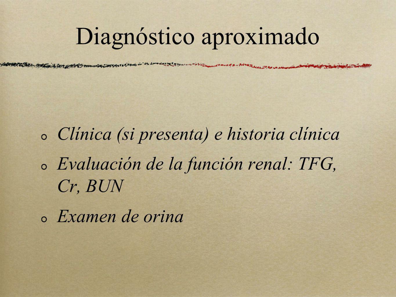 Diagnóstico aproximado Clínica (si presenta) e historia clínica Evaluación de la función renal: TFG, Cr, BUN Examen de orina