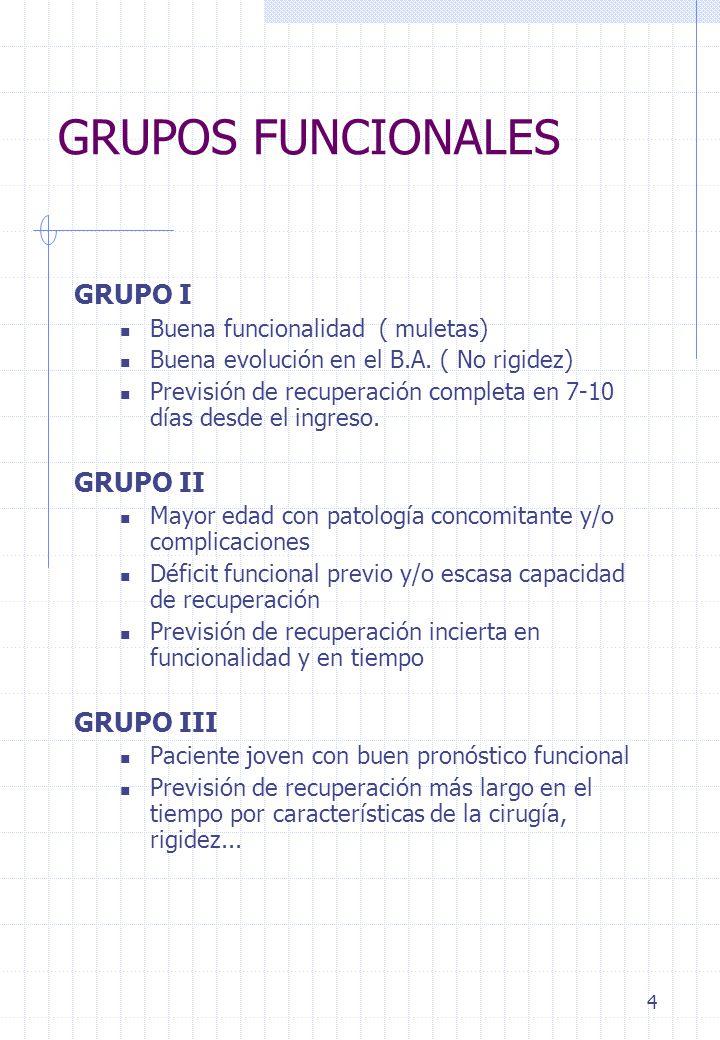 5 PROTOCOLO DE TRATAMIENTO GRUPO FUNCIONAL I CINESITERAPIA: GRUPO Isométricos de cuadriceps, psoas y glúteos Libres supervisados de flexión-abducción de cadera Reeducación de marcha y Escaleras TERAPIA OCUPACIONAL: GRUPO(1 día) Enseñar AVDs Enseñar adaptaciones GRUPO FUNCIONAL ll REEDUCACIÓN FUNCIONAL Bipedestación y Marcha GRUPO FUNCIONAL III CINESITERAPIA Tratamiento Individualizado