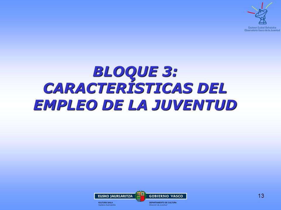 13 BLOQUE 3: CARACTERÍSTICAS DEL EMPLEO DE LA JUVENTUD