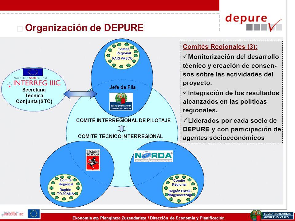 Ekonomia eta Plangintza Zuzendaritza / Dirección de Economía y Planificación Organización de DEPURE Comités Regionales (3): Monitorización del desarro