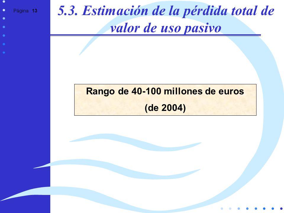 Página 13 5.3. Estimación de la pérdida total de valor de uso pasivo Rango de 40-100 millones de euros (de 2004)