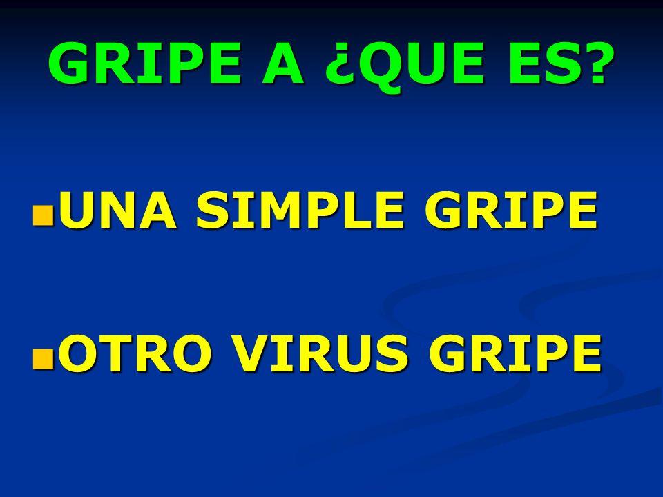 GRIPE A ¿QUE ES? UNA SIMPLE GRIPE UNA SIMPLE GRIPE OTRO VIRUS GRIPE OTRO VIRUS GRIPE