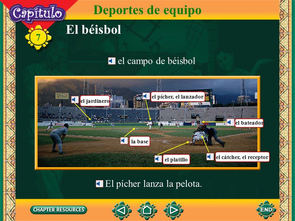 El béisbol Deportes de equipo 7 el jugador de béisbol el bate la pelota el guante