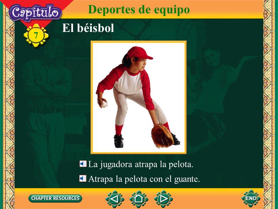 El béisbol Deportes de equipo 7 El bateador batea. Batea un jonrón. El jugador corre de una base a otra.
