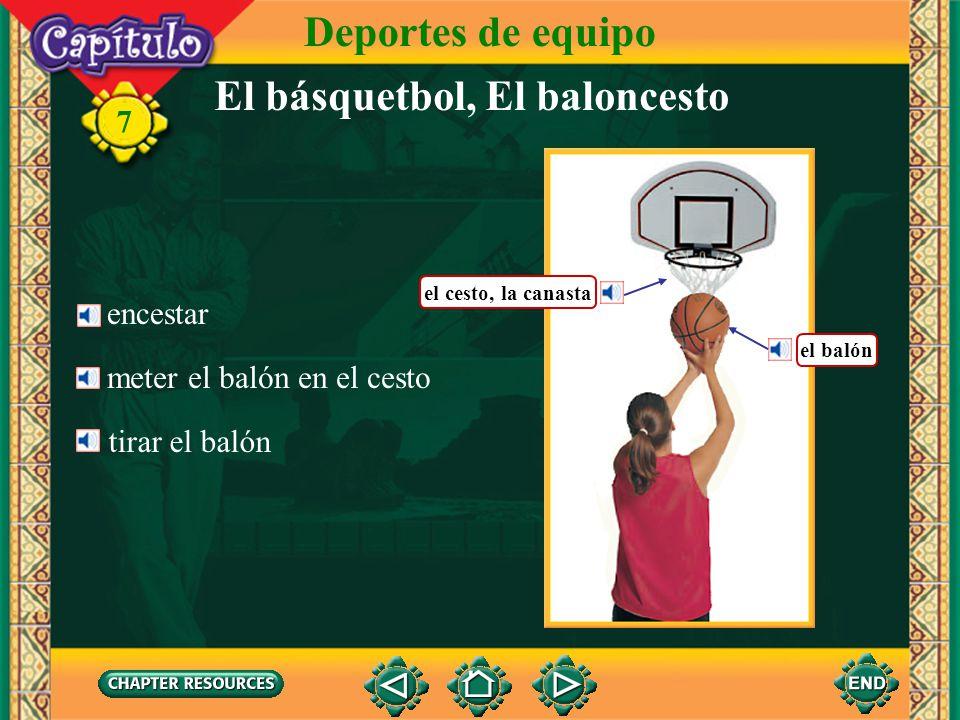 El básquetbol, El baloncesto Deportes de equipo 7 driblar con el balón la cancha de básquetbol