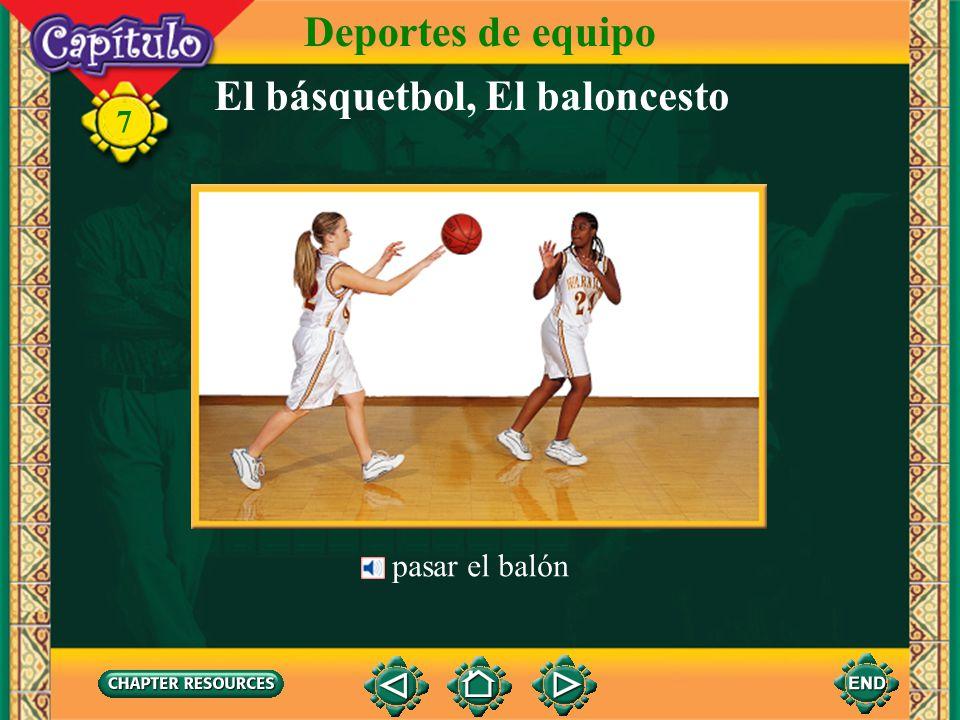 El básquetbol, El baloncesto Deportes de equipo 7 meter el balón en el cesto tirar el balón encestar el balón el cesto, la canasta