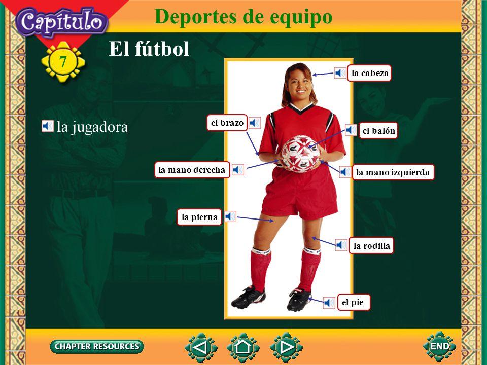El fútbol Deportes de equipo 7 la jugadora el brazo el balón la mano izquierda la mano derecha la pierna el pie la cabeza la rodilla