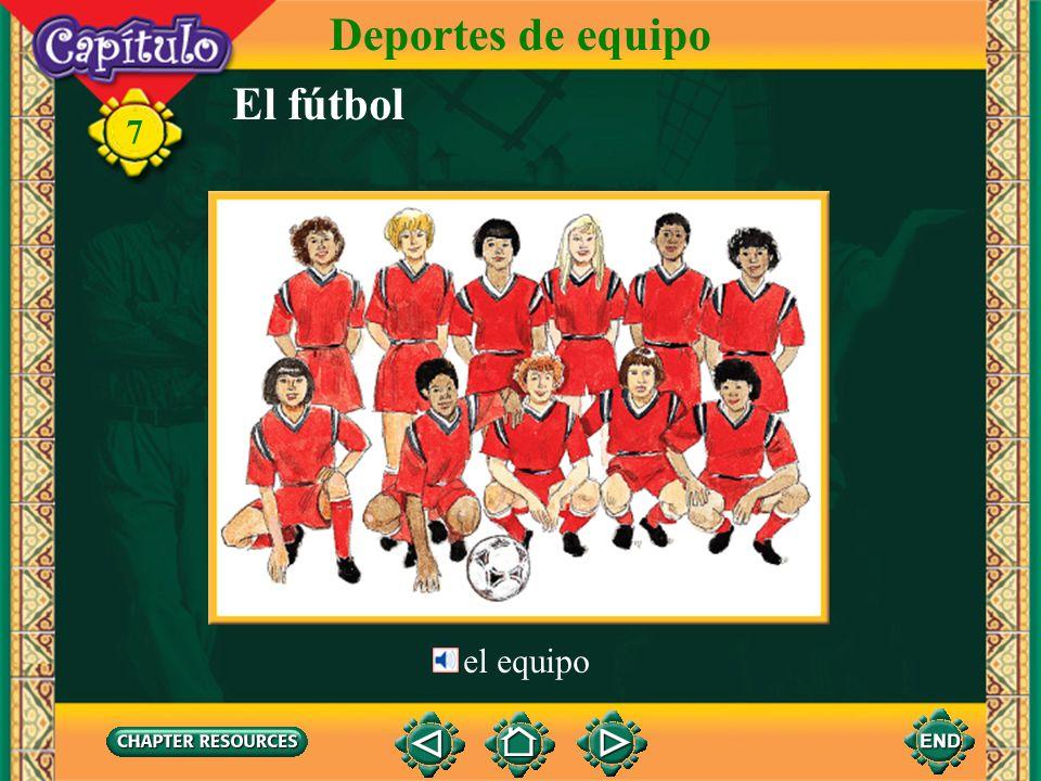 El fútbol Deportes de equipo 7 el equipo