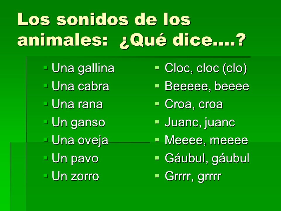 Los sonidos de los animales: ¿Qué dice….? Una gallina Una gallina Una cabra Una cabra Una rana Una rana Un ganso Un ganso Una oveja Una oveja Un pavo