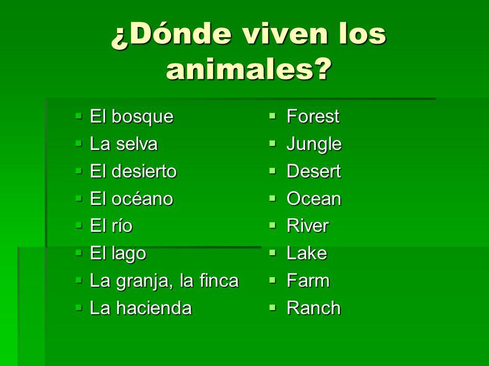 ¿Dónde viven los animales? El bosque El bosque La selva La selva El desierto El desierto El océano El océano El río El río El lago El lago La granja,