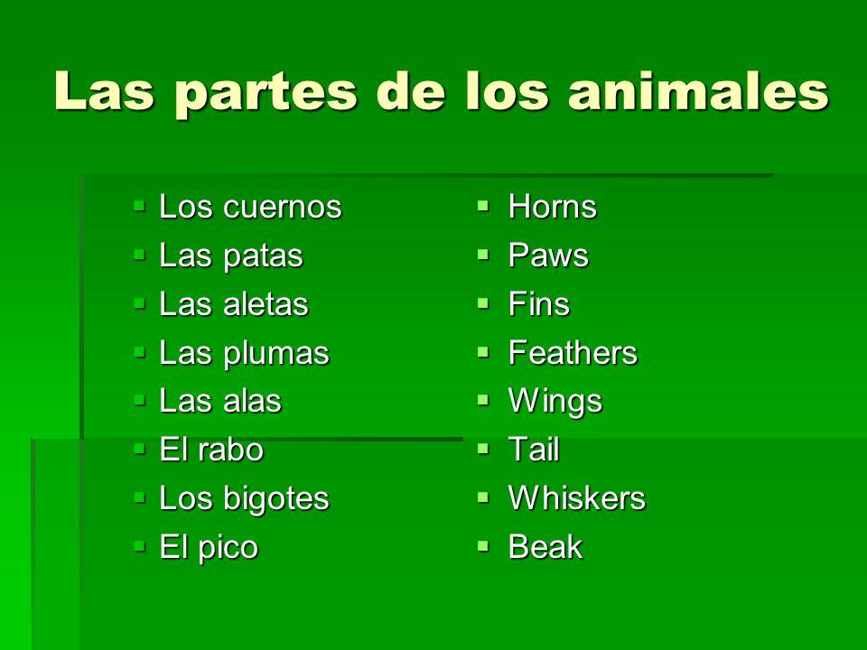 Las partes de los animales Los cuernos Los cuernos Las patas Las patas Las aletas Las aletas Las plumas Las plumas Las alas Las alas El rabo El rabo L