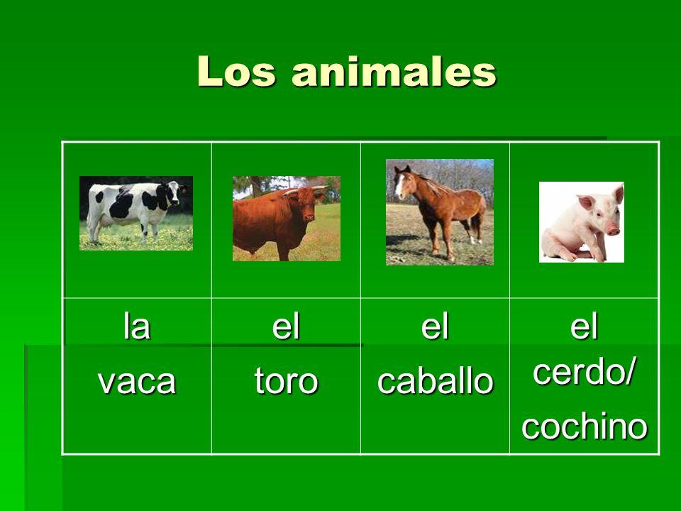 Los animales lavacaeltoroelcaballo el cerdo/ cochino