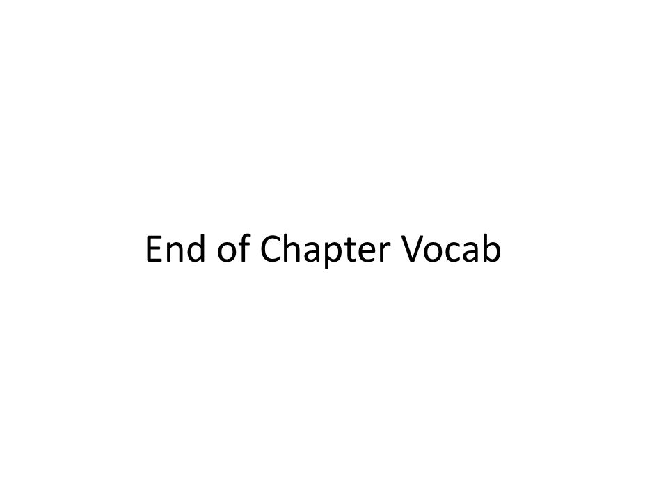 End of Chapter Vocab