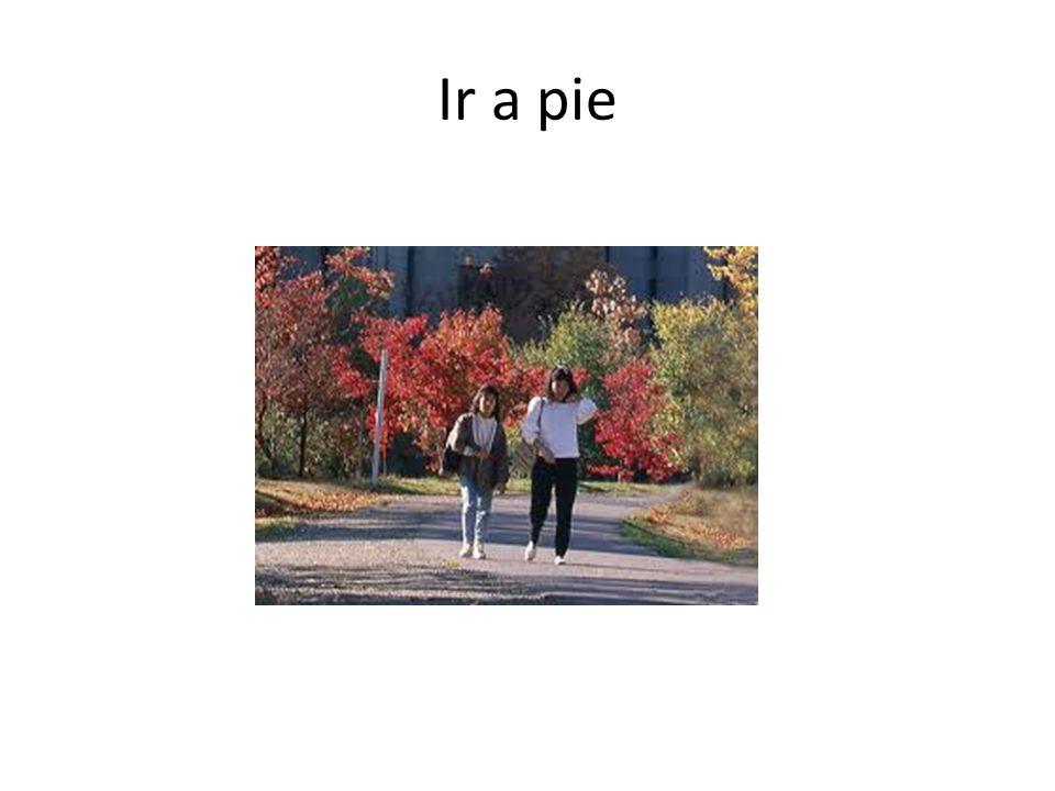 Ir a pie