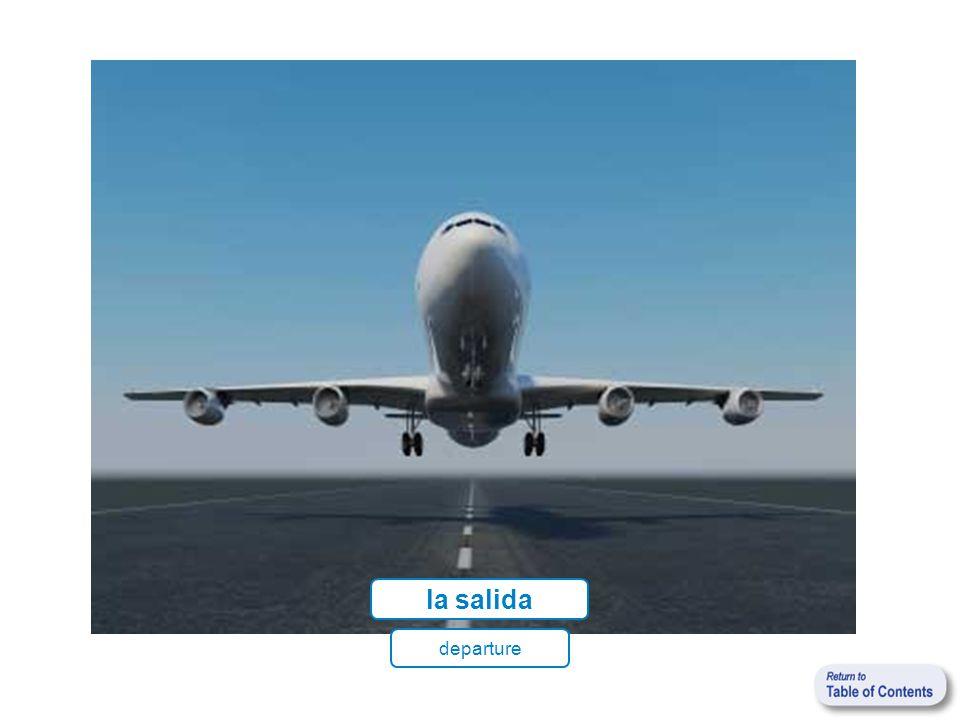 el (la) pasajero(a) passenger