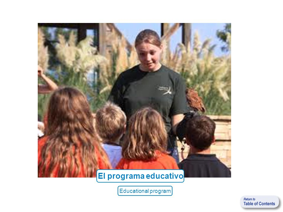 El programa educativo Educational program