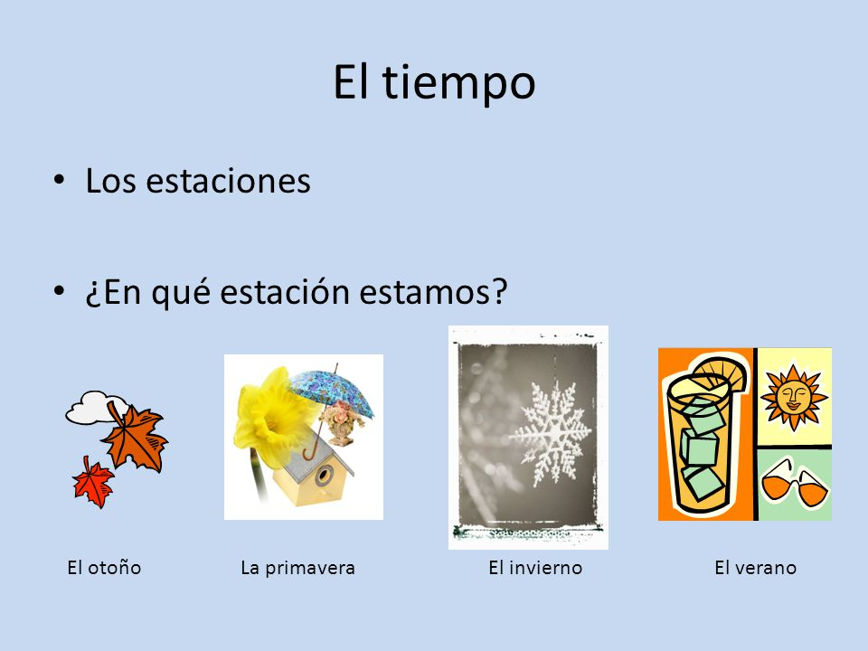 El tiempo Los estaciones ¿En qué estación estamos? El otoñoLa primavera El invierno El verano