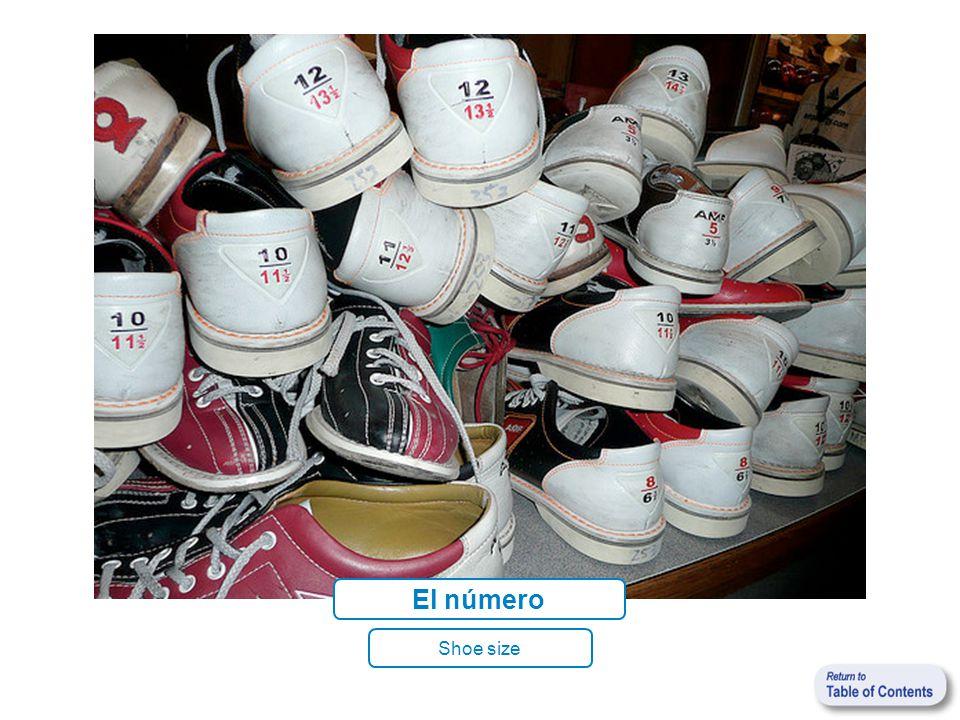 El número Shoe size