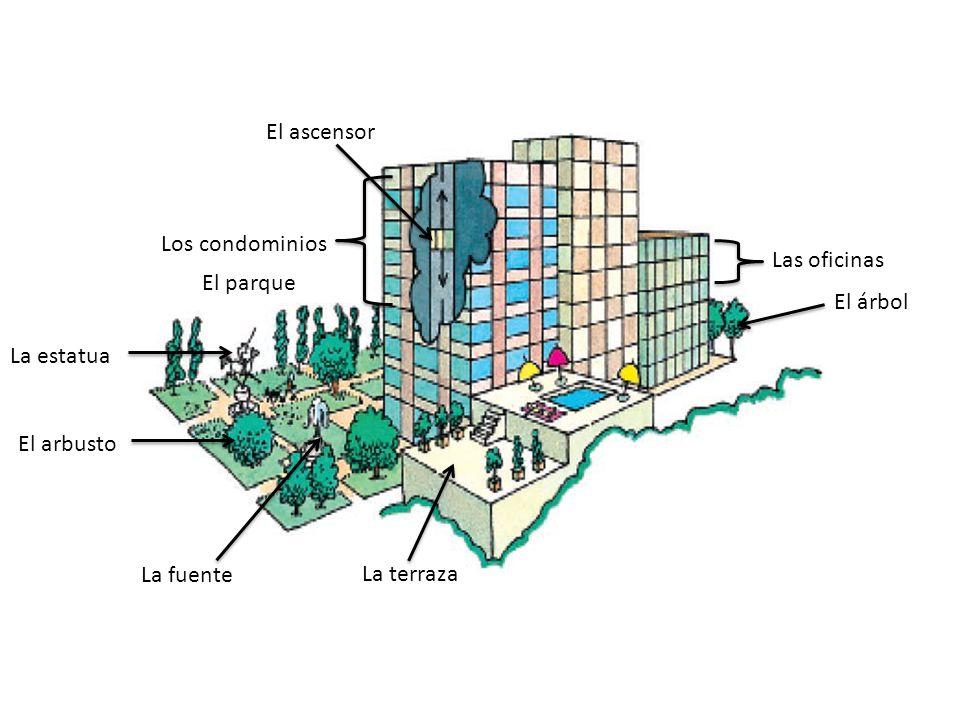 El ascensor Los condominios El parque La estatua El árbol El arbusto La fuente La terraza Las oficinas