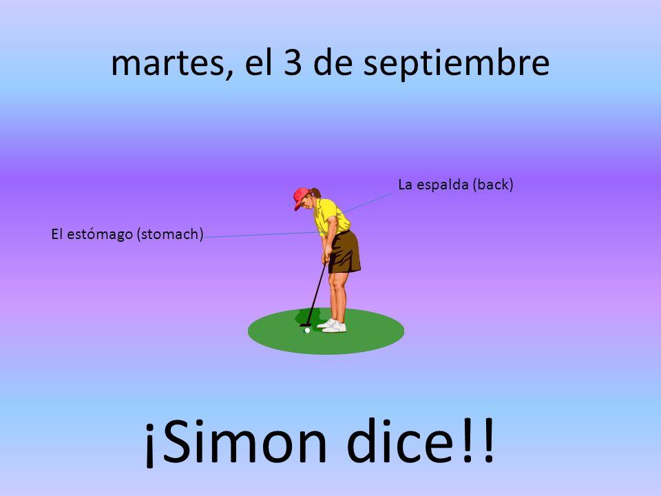 martes, el 3 de septiembre La espalda (back) El estómago (stomach) ¡Simon dice!!