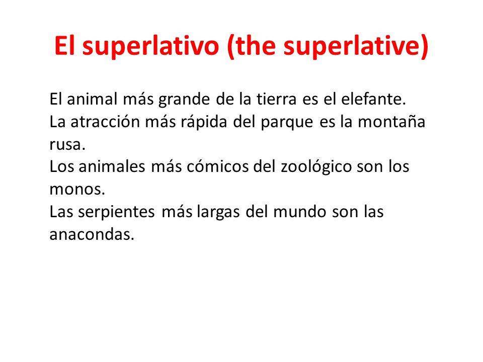 El superlativo (the superlative) El animal más grande de la tierra es el elefante. La atracción más rápida del parque es la montaña rusa. Los animales