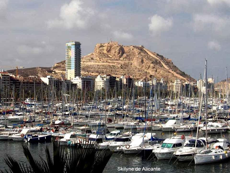 Skilyne de Alicante