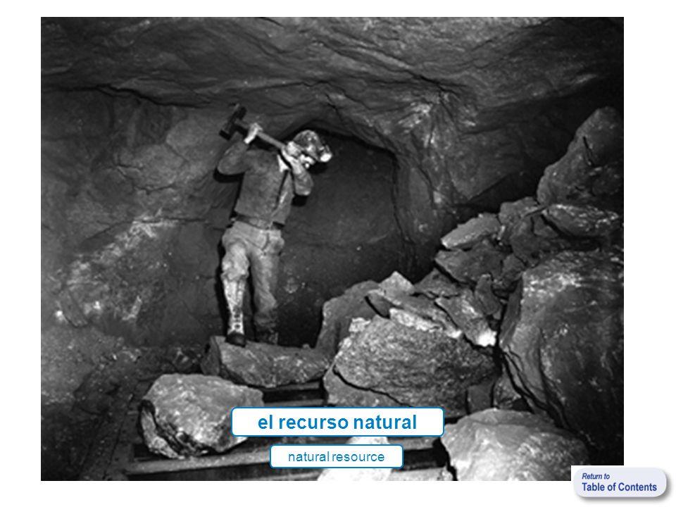 el recurso natural natural resource