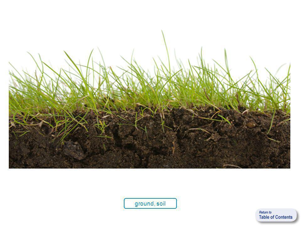ground, soil