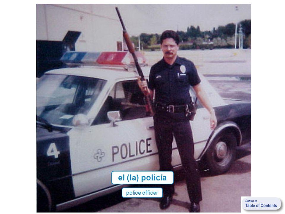 el (la) policía police officer