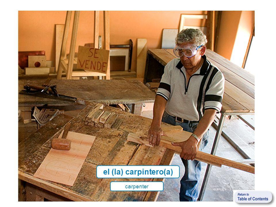 el (la) carpintero(a) carpenter