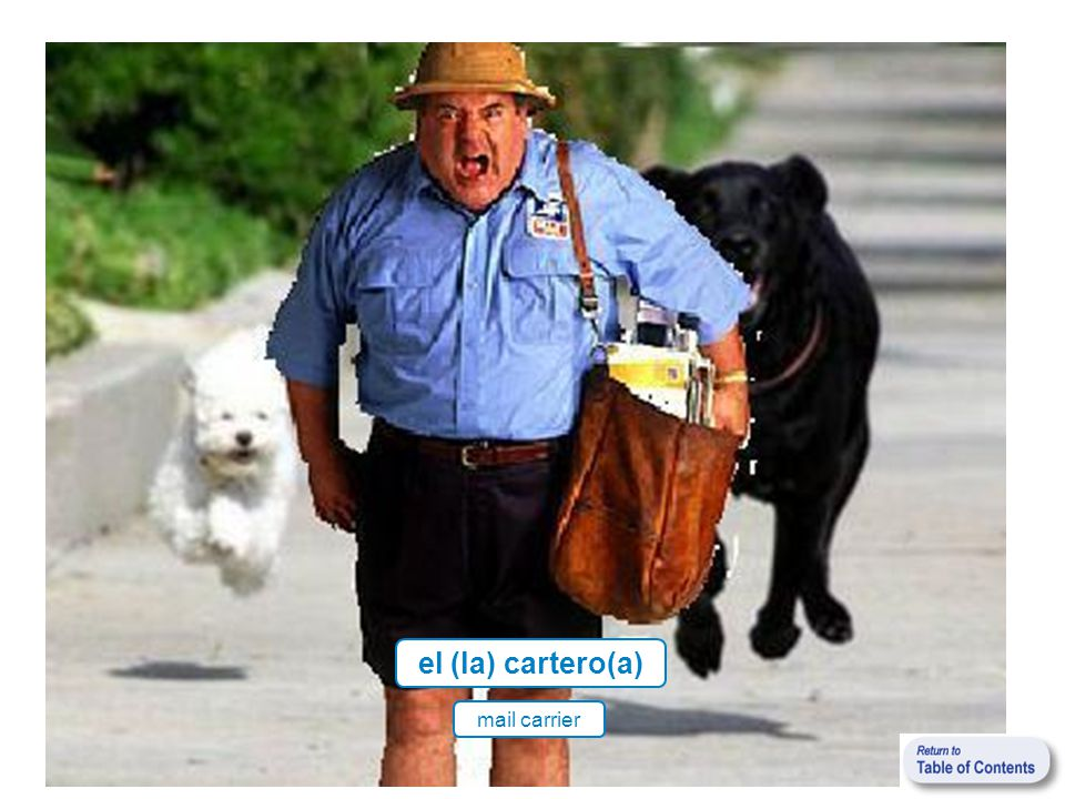 el (la) cartero(a) mail carrier