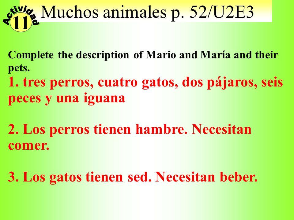 ¿Dónde? Match the place to the activities you might do there 1. el parque 2. el supermercado 3. el museo 4. el teatro 5. la cafetería 6. el gimnasio v