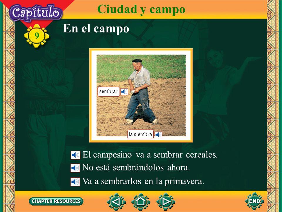 9 En el campo Ciudad y campo Los campesinos viven en el campo. Ellos tienen una finca. Ellos cultivan los campos. El cultivo de los cereales es muy im