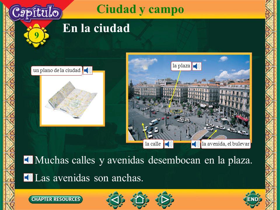 9 En la ciudad Ciudad y campo Muchas calles y avenidas desembocan en la plaza.