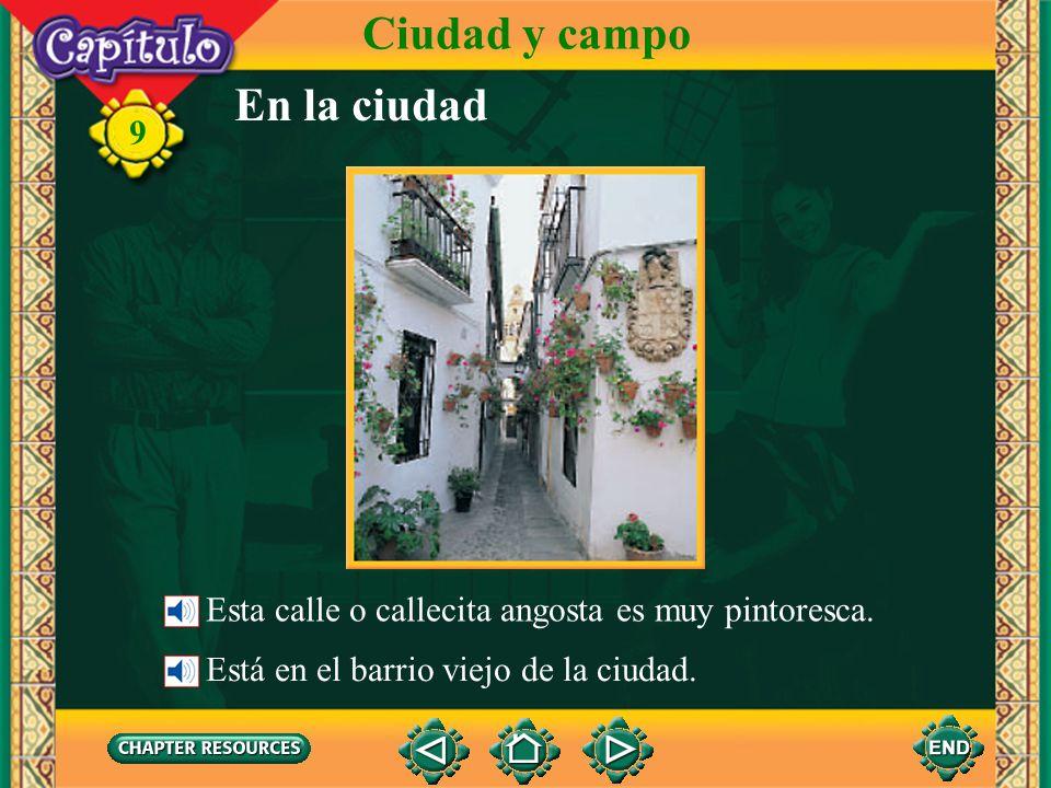 9 En la ciudad Ciudad y campo Esta calle o callecita angosta es muy pintoresca.