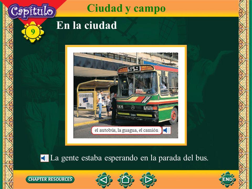 9 el ganadocattle Identifying some farm animals Vocabulario Ciudad y campo la vacacow el cerdopig (pork) la gallinahen (English-Spanish)