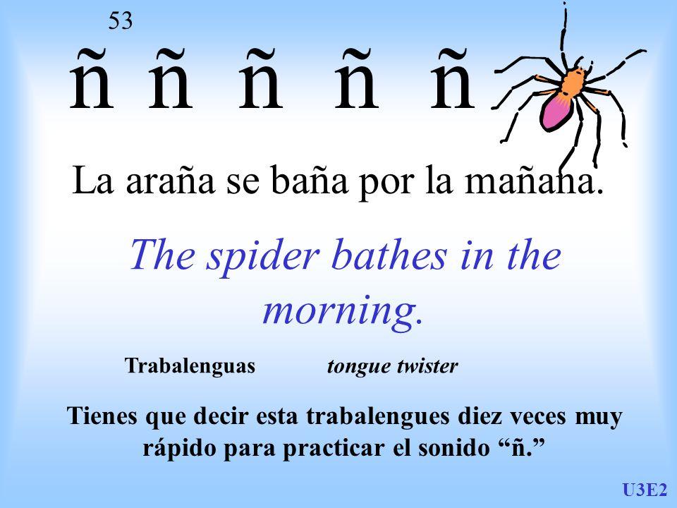 U3E2 53 La araña se baña por la mañana. The spider bathes in the morning.