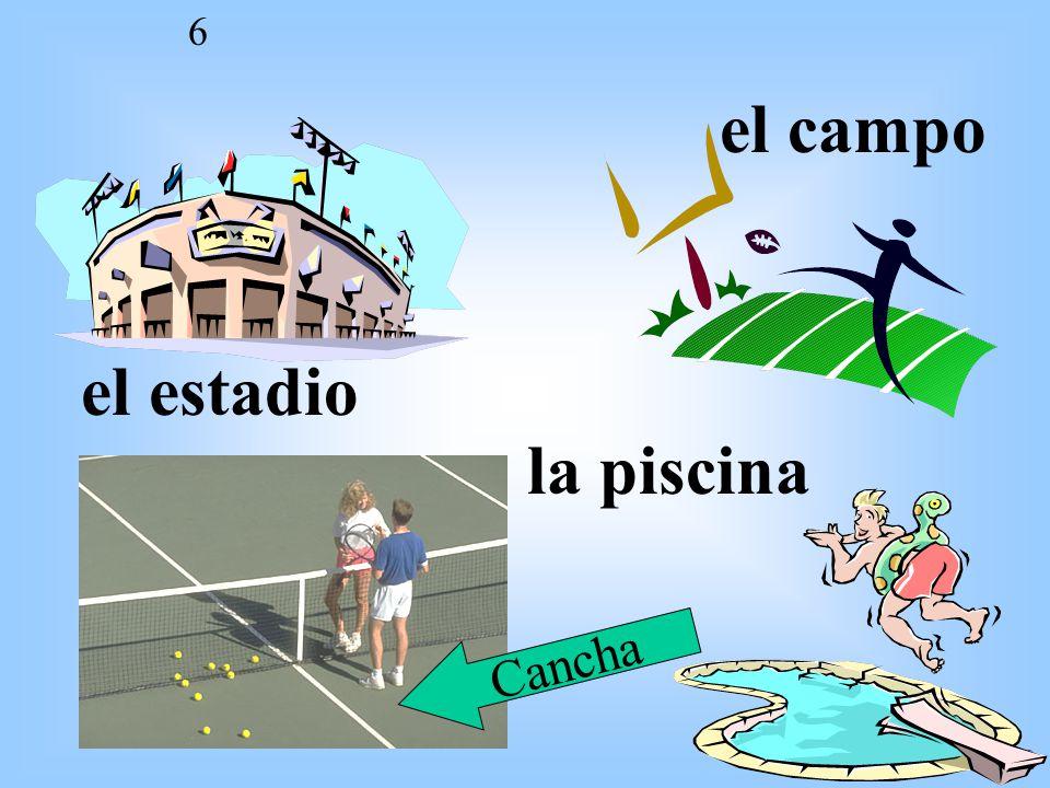 U3E2 6 el estadio el campo la piscina Cancha