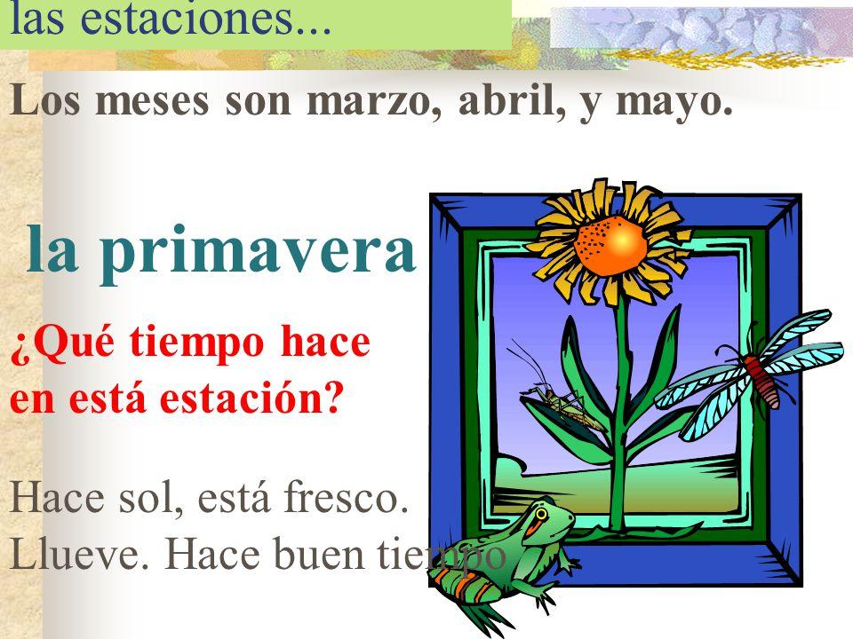 las estaciones... Los meses son marzo, abril, y mayo. la primavera ¿Qué tiempo hace en está estación? Hace sol, está fresco. Llueve. Hace buen tiempo