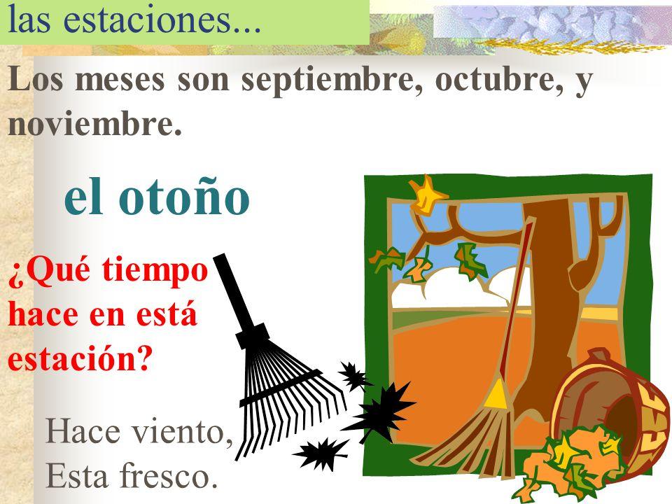 las estaciones... Los meses son septiembre, octubre, y noviembre. el otoño ¿Qué tiempo hace en está estación? Hace viento, Esta fresco.