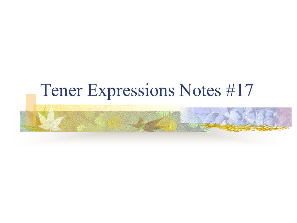 Special expressions using tener Congugate the verb tener with each expression.
