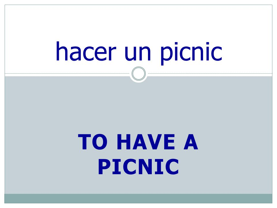 TO HAVE A PICNIC hacer un picnic