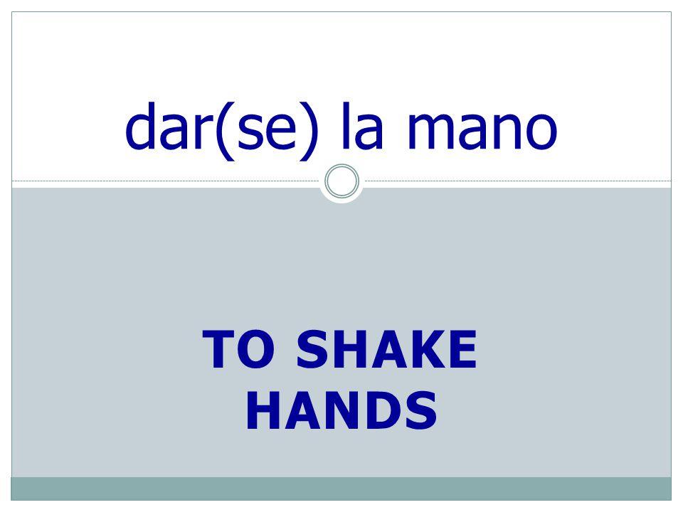 TO SHAKE HANDS dar(se) la mano
