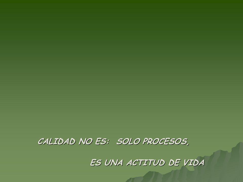 CALIDAD NO ES: SOLO PROCESOS, ES UNA ACTITUD DE VIDA ES UNA ACTITUD DE VIDA
