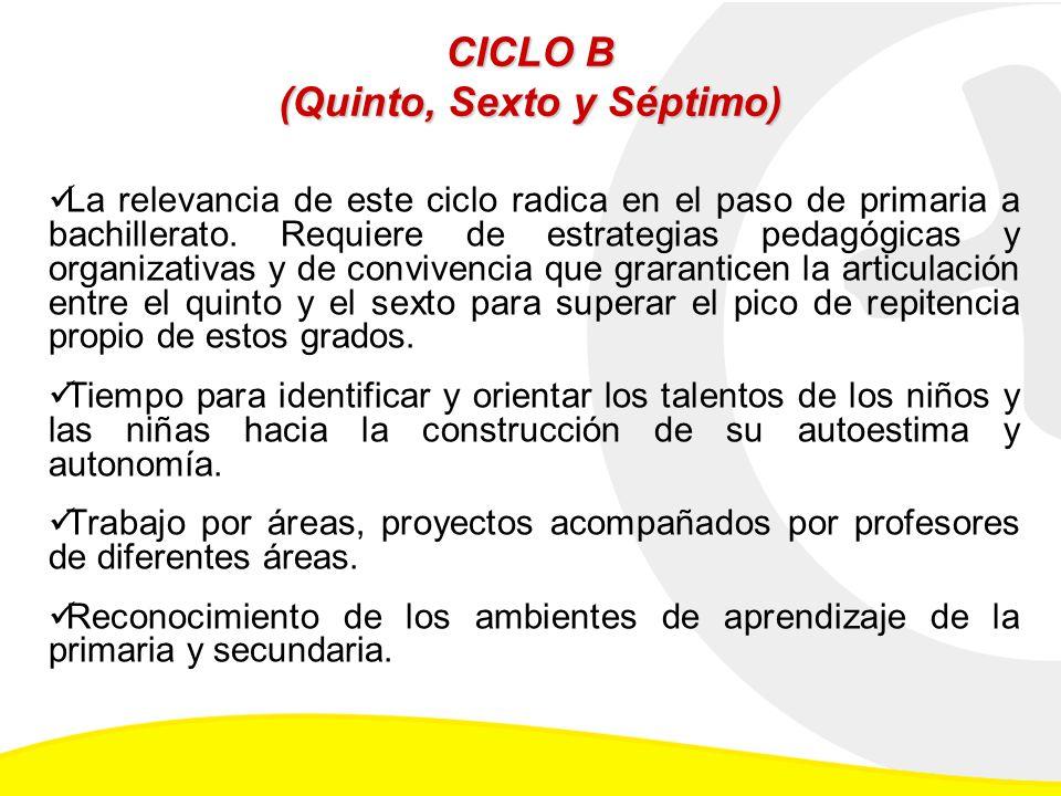 CICLO B (Quinto, Sexto y Séptimo) La relevancia de este ciclo radica en el paso de primaria a bachillerato.