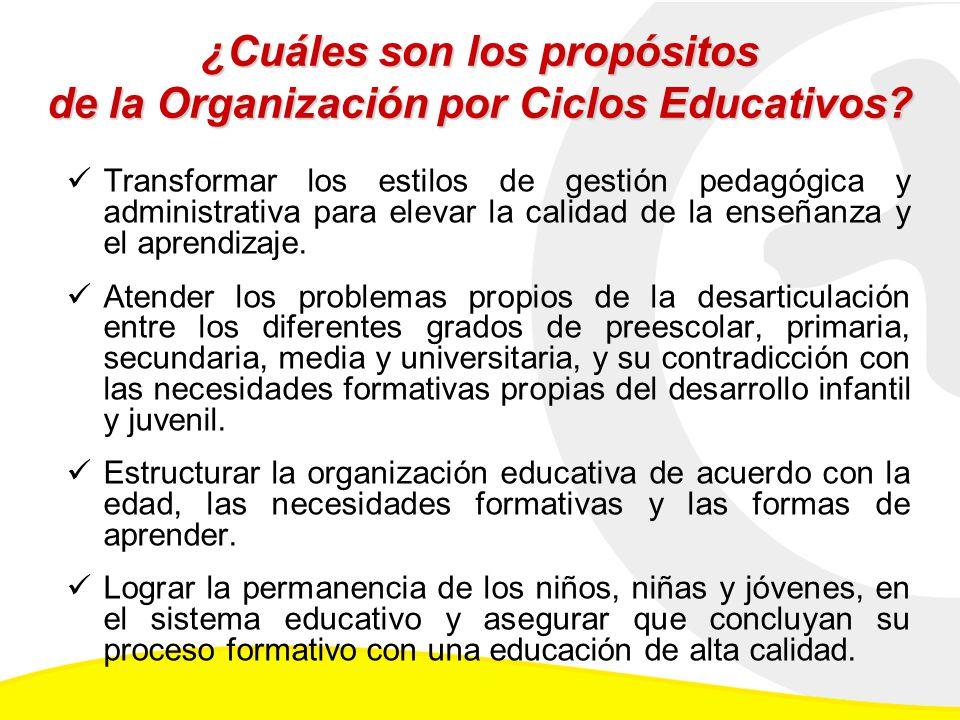 ¿Cuáles son los propósitos de la Organización por Ciclos Educativos.