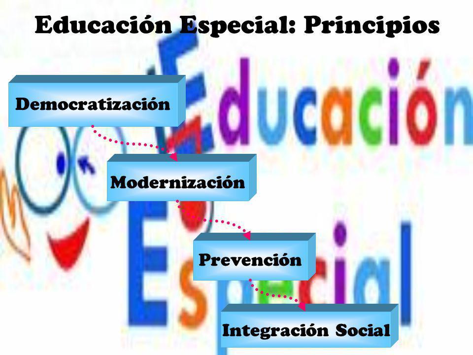 Educación Especial: Principios Democratización Modernización Prevención Integración Social