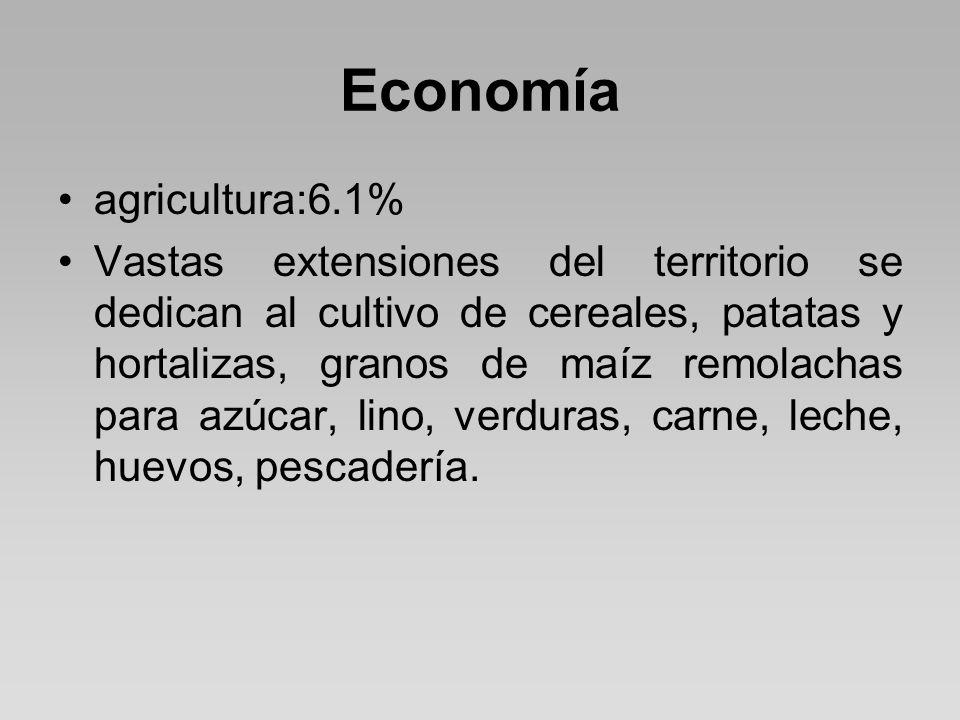Economía agricultura:6.1% Vastas extensiones del territorio se dedican al cultivo de cereales, patatas y hortalizas, granos de maíz remolachas para azúcar, lino, verduras, carne, leche, huevos, pescadería.